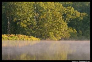 stages photo Rouen 76 / photo de nature  lac de Poses vers Rouen