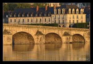 stages photo Blois 41