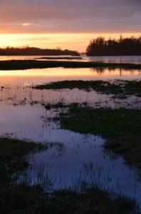 Photo bord de Loire. apprendre la photo, c'est aussi apprendre les cadrages