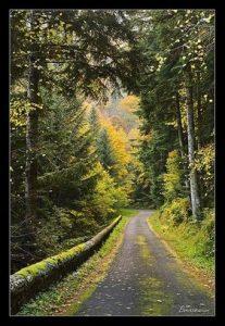 photo d'Auvergne